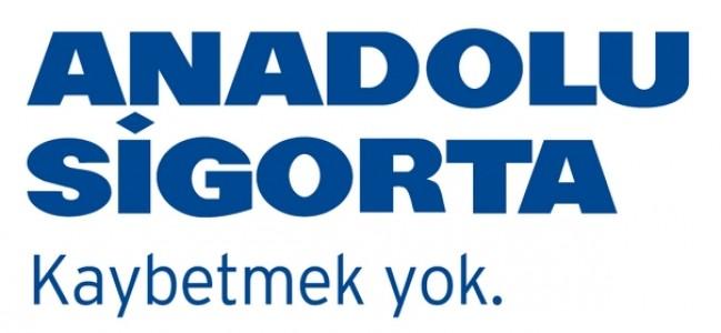 Altın Örümcek, Anadolu Sigorta Websitesi'nin oldu
